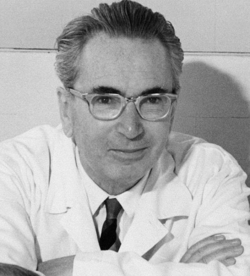 Viktor Frankl 1965. Quelle: Viktor-Frankl-Archiv