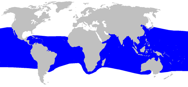 Verbreitungsgebiet (Wikimedia Commons)