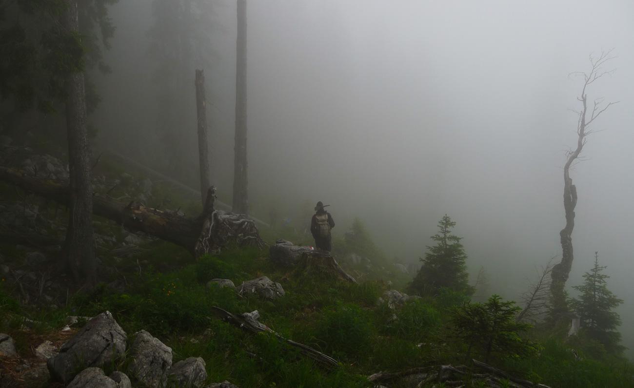Wegesanierer im Gesäuse bei Nebel (Ennstalerhütte-Hochscheiben)
