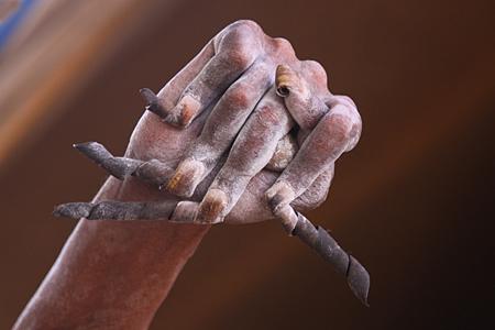 Fingernägel eines indischen Sadhu (Magnolie via www.cosmiq.de)