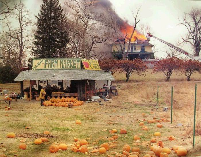 Joel Sternfeld; McLean, Virginia; December 1978