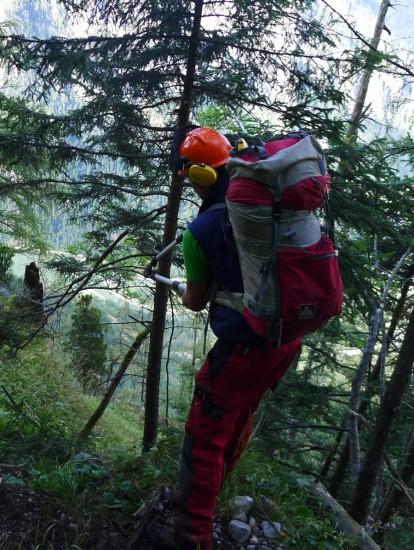 Arbeit mit der Astschere am Wasserfallweg im Gesäuse