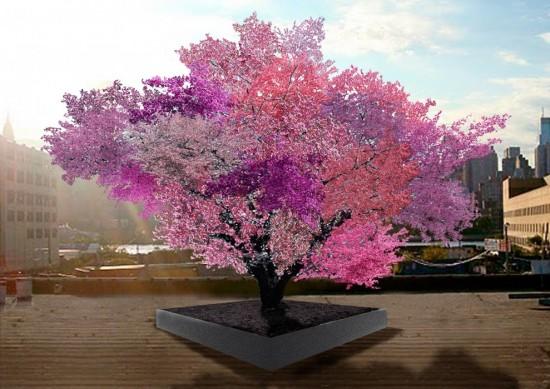 Tree of 40 Fruit, Künstlerische Darstellung © Sam Van Aken