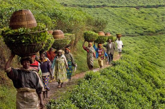 Plastiksackerl wird man in Ruanda schwer finden (via oneworld365.org).