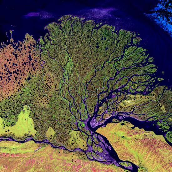 Infrarot Satellitenaufnahme des Lenadeltas (NASA)