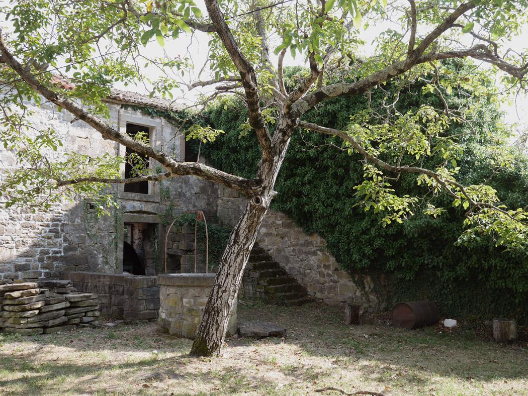 Natur nimmt zurück #2 | Spuk im Partisanendorf
