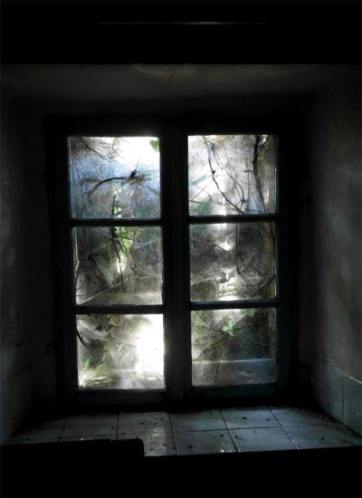 Verwachsenes Fenster