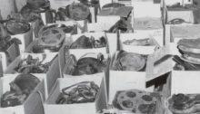 533 Filmrollen wurden gefunden (via cbc.ca)