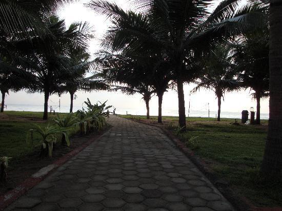 Der Weg zum Strand (https://www.tripadvisor.com.sg/ReviewPhotos-g1162480-d477867-r88260036-Mamalla_Beach_Resort-Mahabalipuram_Tamil_Nadu.html#28861110)