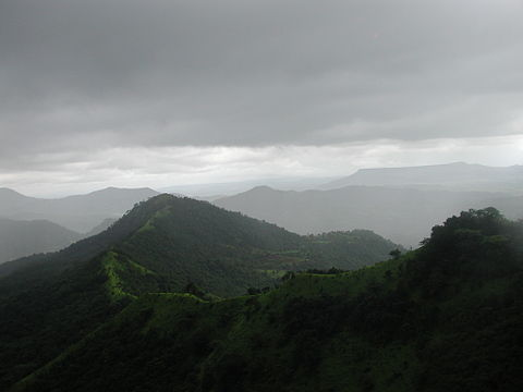 Wolli im Wunderland. Tagebuch einer Indienreise #10