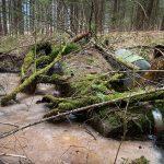 KFZ im Wald versenkt