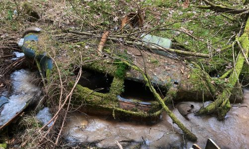 Natur nimmt zurück #3 | KFZ-Naturdenkmäler
